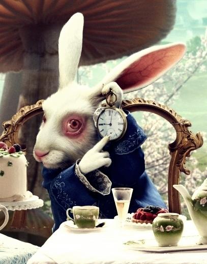 coelho-branco-alice-no-pac3ads-das-maravilhas